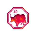 kitajski horoskop bivol
