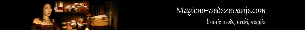 magicno-vedezevanje-logo-1